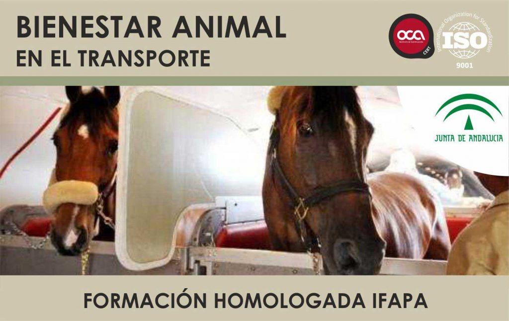 Curso de Bienestar Animal en el Transporte. Curso Oficial