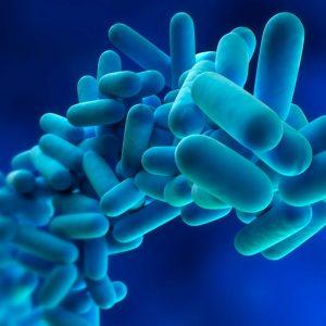 Curso de Control de Legionella Homologado icono eesea